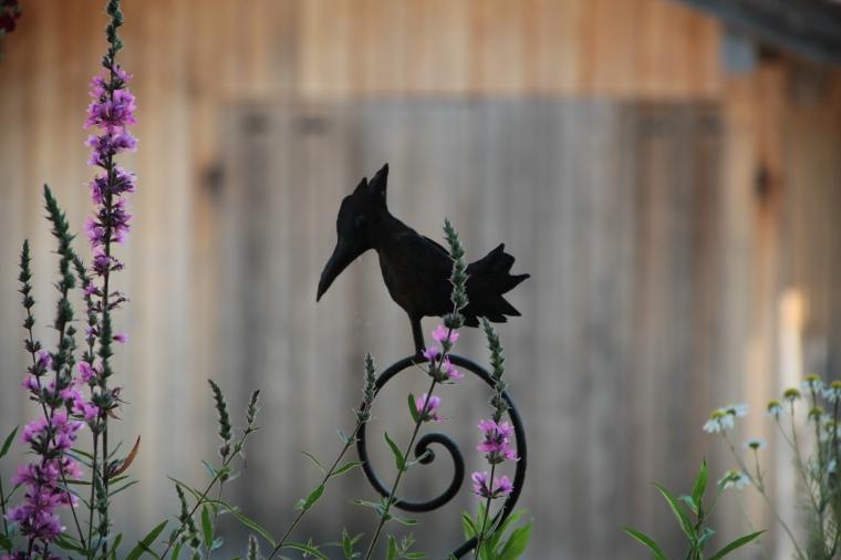 The iron bird.